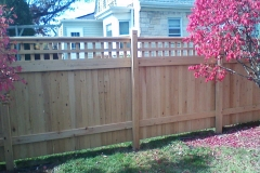 Privacy-Fence-11