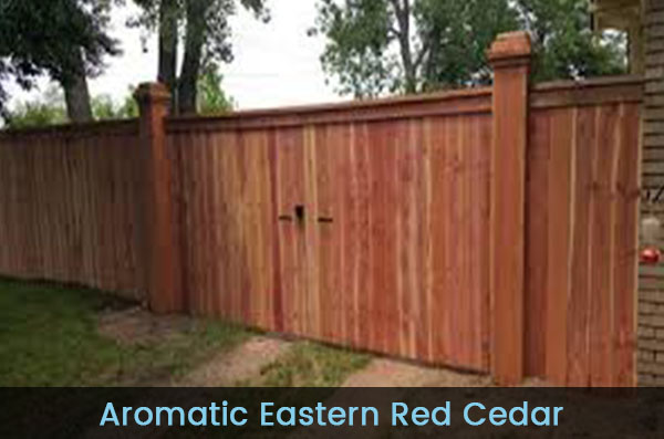 Home-Aromatic-Red-Cedar